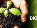 Biohumus / Vermicompost / Natural fertilizer - photo 1