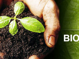 Biohumus / Vermicompost / Natural fertilizer - photo 1