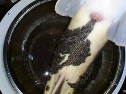 Natural black caviar of Siberian sturgeon - photo 3